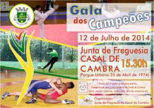 Freguesia de Casal de Cambra promove Gala dos Campeões no dia 12